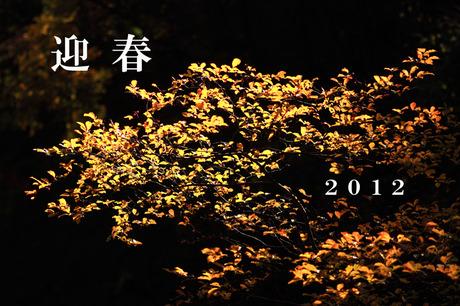 2012_newyear