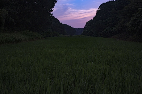 200809_3